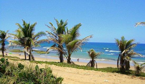 d882dc2819ac Maré Baixa. - Foto de Praia do Flamengo, Salvador - TripAdvisor