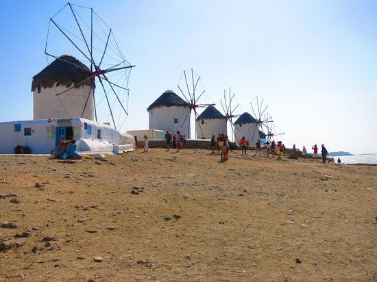 Kalafati Dive Center : I mulini a vento