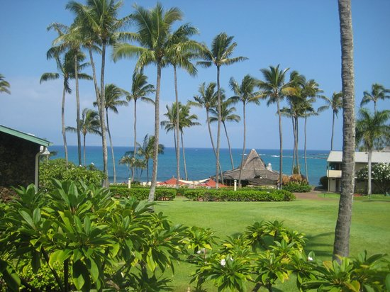 Napili Shores: View from the room