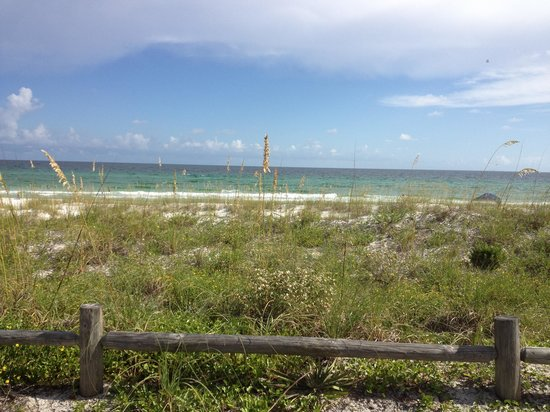 Henderson Beach State Park Campground: Nature's beauty