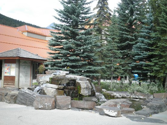 Delta Hotels by Marriott Kananaskis Lodge: On the grounds