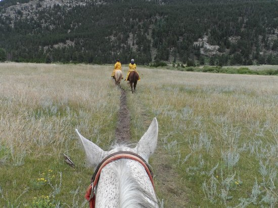 National Park Gateway Stables: Endo Valley