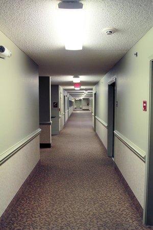 Ashton Inn & Suites- Navy : Indoor Corridor