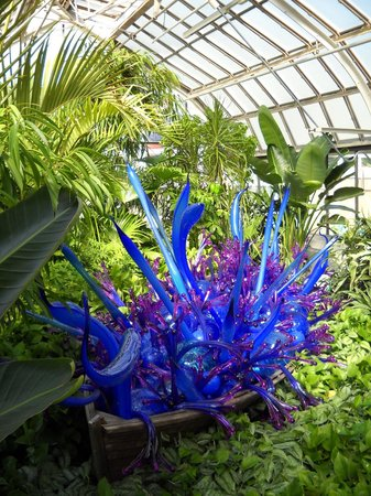 Franklin Park Conservatory And Botanical Gardens: Conservatory!