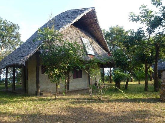 Shamba Kilole Eco Lodge : le lodge