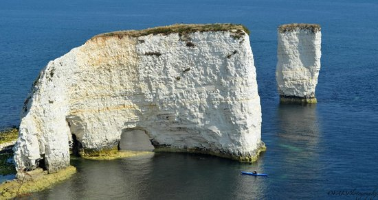 Old Harry Rocks: The view from the clifftop.