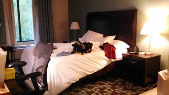 Hilton Garden Inn Cartersville: King Size Bed
