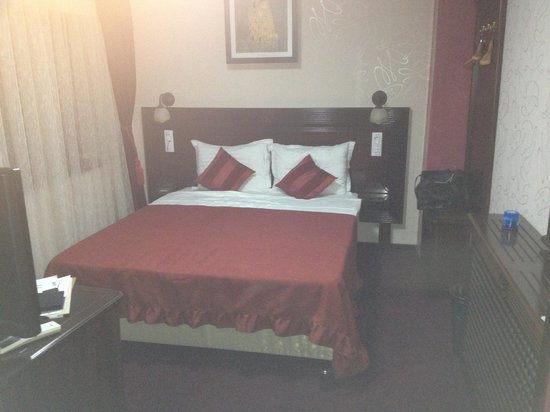 Daily Plaza Hotel: Double Room