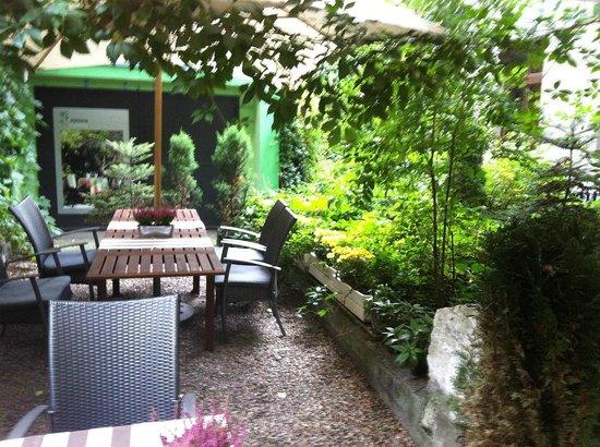 Green Backyard Picture Of Zielona Kuchnia Krakow