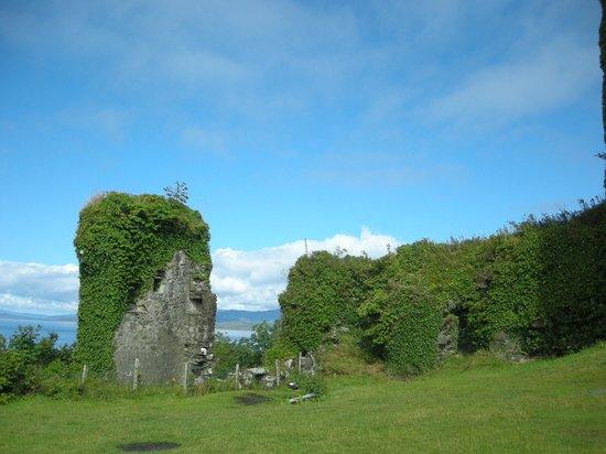 Dunollie Museum, Castle and Grounds: Castillo