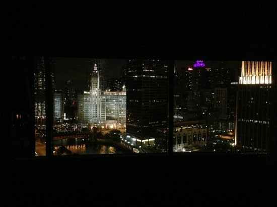 Swissotel Chicago: Left view from our room