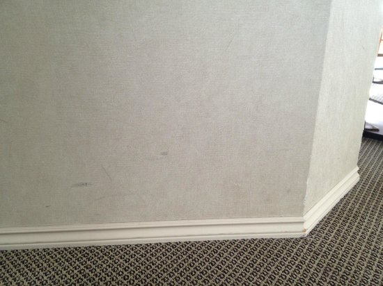 Chateau Victoria Hotel and Suites: Scuffs on walls