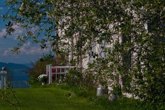 Annexstad Gard : Annexstad gård