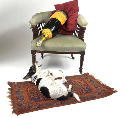 Eastbourne Auction Rooms: Well behaved dogs Welcome !!!