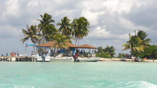 Geoff S Caye It Was Hard To Leave Picture Of Belize Cruise Excursions Goff S Caye Beach
