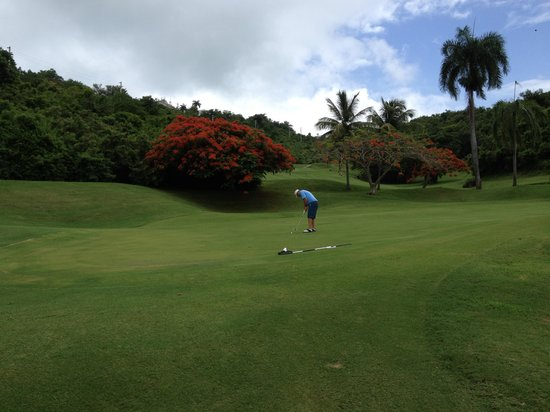 El Conquistador Golf Course