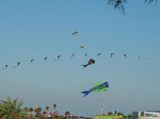 Rockport Beach : Kites over the beach