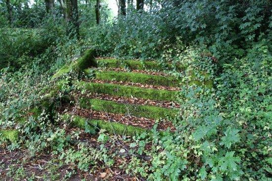 Treppe Im Garten Picture Of Chateau De Vaulx Saint Julien De