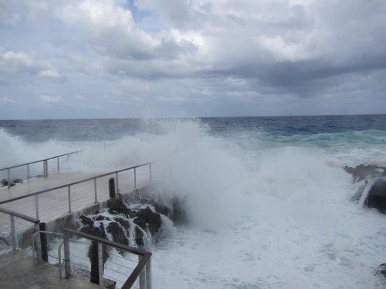 Plantation Village Beach Resort: Big waves