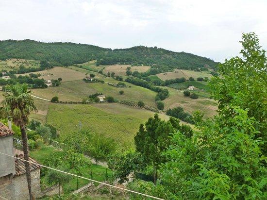 Il Colle: Serra San Quirico 6