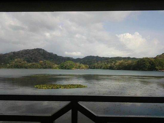 Restaurante Los Lagartos : View