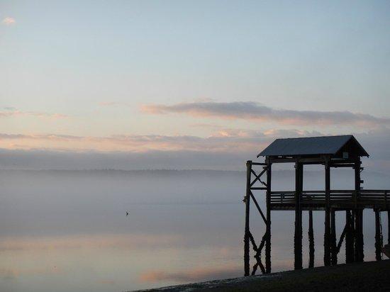 Nisqually Reach Nature Center: Sunrise at Nisqually Delta