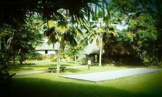 Gecko's Resort : Walking around the Grounds