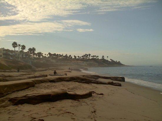 La Jolla Beach Travelodge : Windan Sea Beach- to the South