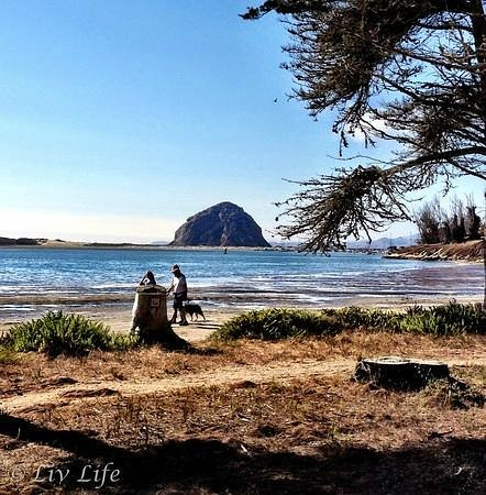 morro bay buddhist personals Personal ads for cayucos, ca are a great way to find a life partner, movie date, or a quick hookup personals are for people local to.