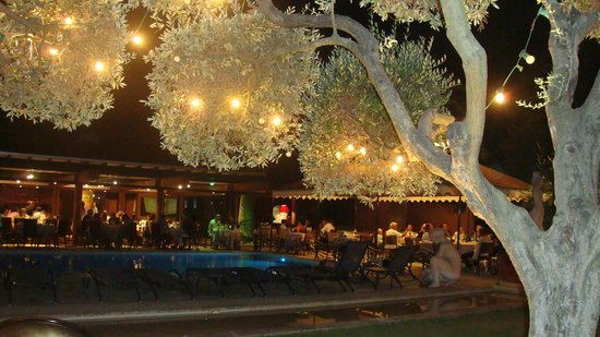 La Villa Duflot : Vue du jardin et de la piscine