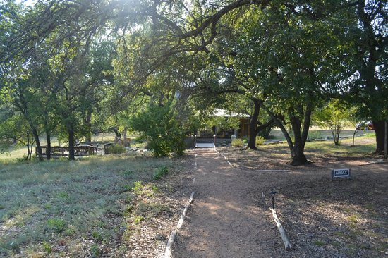 The Lodge at Fossil Rim: Walkway area