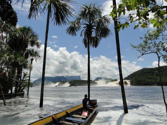 Campamento Morichal Canaima: El embarcadero de la laguna de Canaima