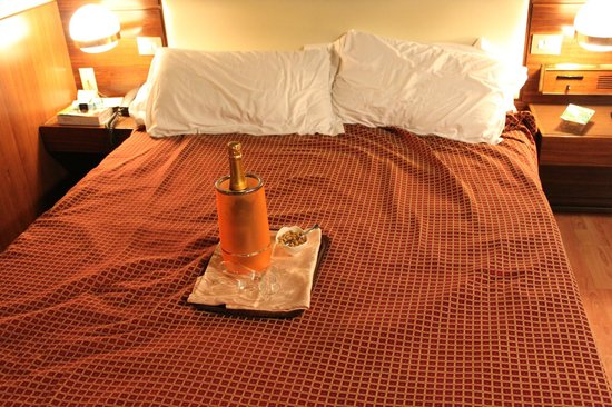 Hotel Elite: Bed