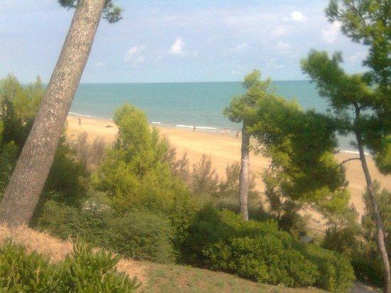 Hotel Mare Blu Resort & SPA: Spiaggia Pineto