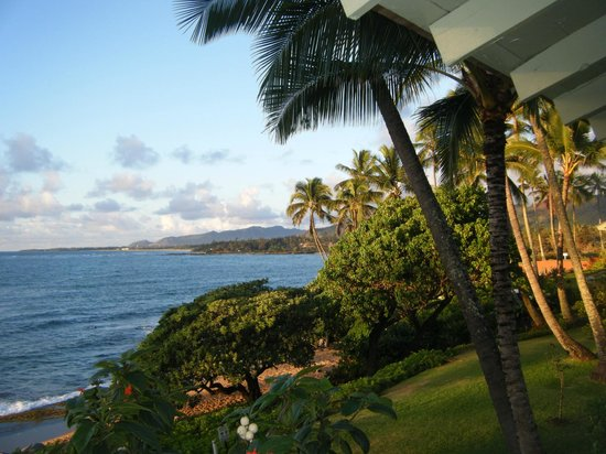 Kapaa Sands: Morning view from lanai of unit 9.