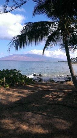 Aston at the Maui Banyan: Across the street from the Aston at Maui Banyan