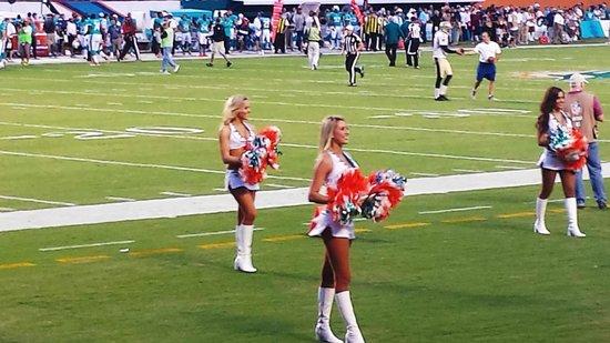 Sun Life Stadium: Miami Dolphins cheerleaders close up