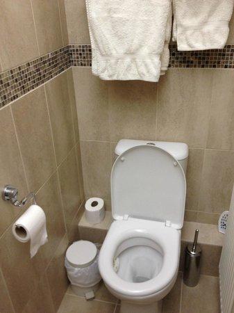 Y-Gorlan Guest House: Bathroom