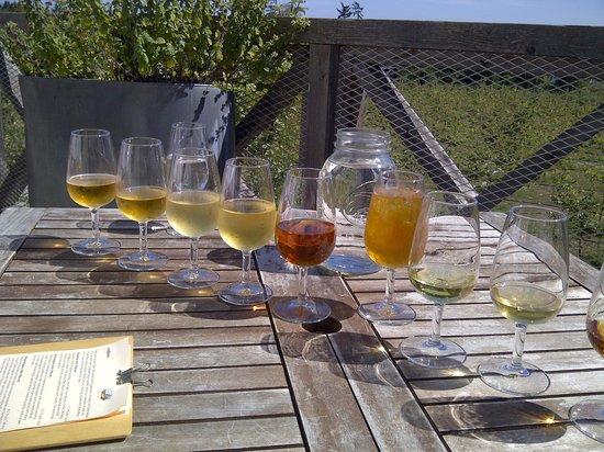 Sea Cider Farm & Ciderhouse : The long flight, samples.
