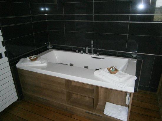 Chateau de Mole : salle de bain 2