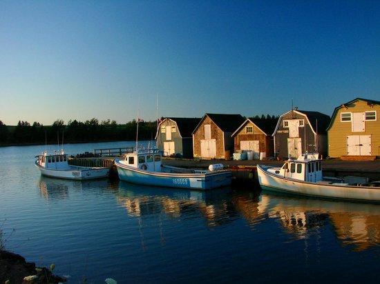 Inn at the Pier: Boats at Bay