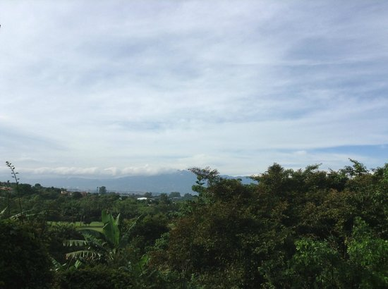 Finca Rosa Blanca Coffee Plantation Resort: view