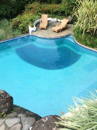 Finca Rosa Blanca Coffee Plantation Resort: pool