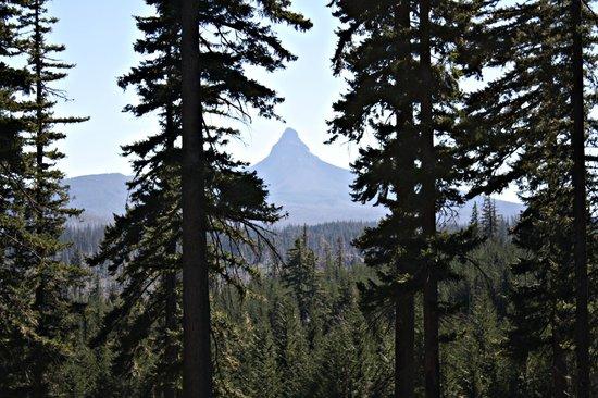McKenzie Pass-Santiam Pass loop: Mt. Washington