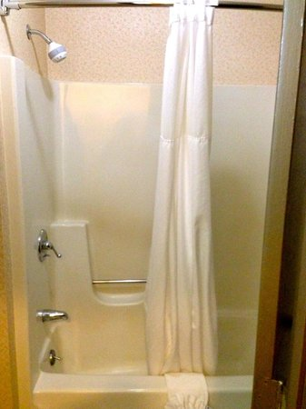 Quality Inn & Suites: shower
