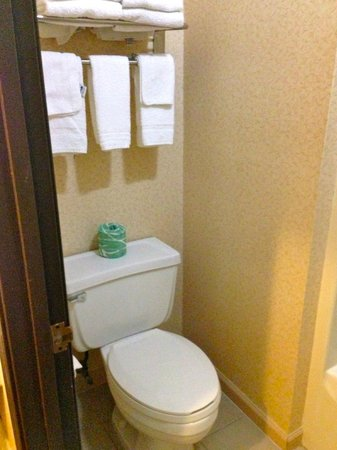 Quality Inn & Suites: toilet in with shaower room