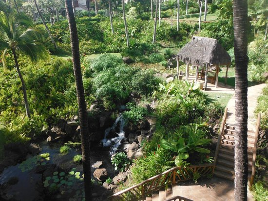 Grand Wailea - A Waldorf Astoria Resort: View of the gardens behind our wing (the chapel wing)