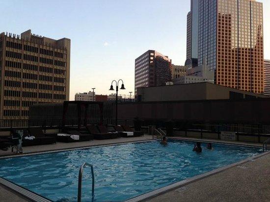 Pool Picture Of Sheraton Dallas Hotel Dallas Tripadvisor