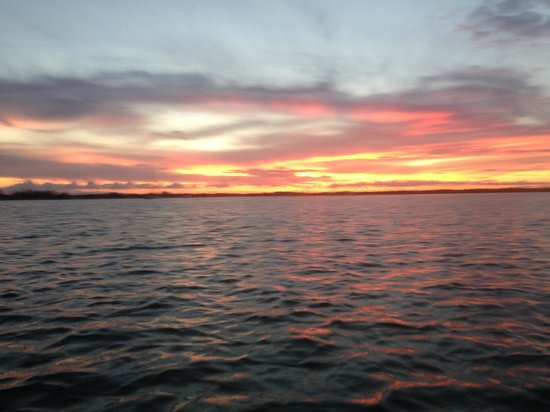 Blue Planet Kayak Eco-Tours : great sunset from the kayak