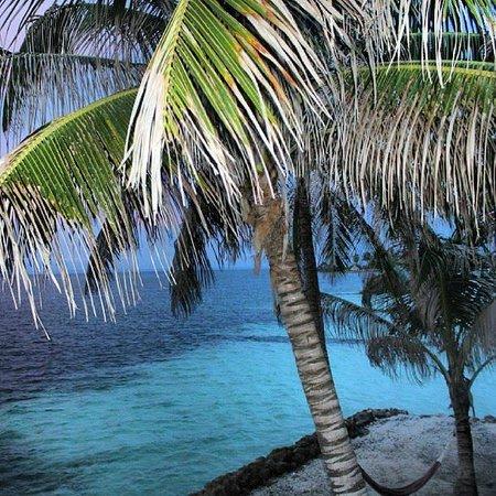 Isla Múcura: SALSIPUEDES ,ISLA TINTIPAN